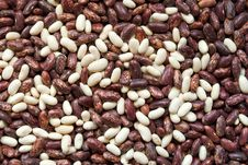 Free Bean Background Royalty Free Stock Photography - 17935967