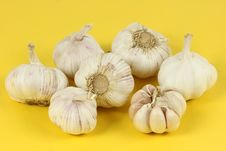 Free Garlic Royalty Free Stock Photo - 17936015