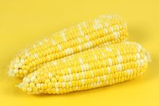Free Corn Royalty Free Stock Photo - 17936065