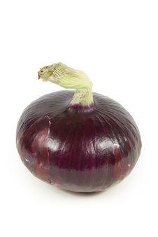 Free Purple Onion Stock Image - 17936841