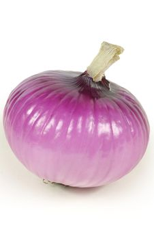 Free Red Onion Stock Photography - 17936862