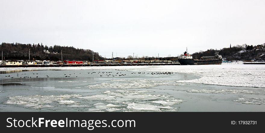Frozen Marina