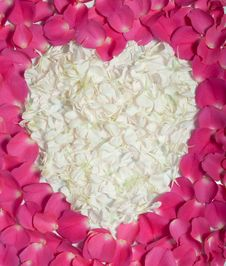 Free Cream Heart In Pink Rose Petals Royalty Free Stock Photos - 17941618