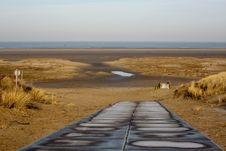 Free Dune Path Royalty Free Stock Photo - 17942125