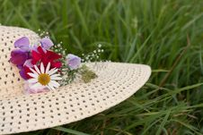 Free A Woman Hat  On A Green Grass Royalty Free Stock Images - 17946779