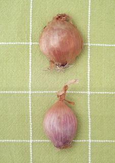 Free Shallots On Green Kitchen Towel Royalty Free Stock Photos - 17947268