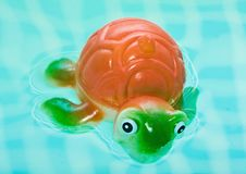 Free Turtle  In Bath Bathroom Stock Photos - 17947333