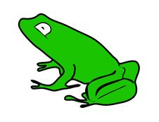 Free Frog Color Royalty Free Stock Image - 17949506