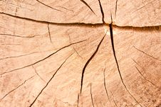 Free Crack On The Teak Textures Stock Photos - 17949603