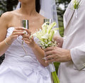 Free Fiance And Bride Keep Steel Glass Royalty Free Stock Image - 17954076