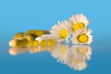 Free Daisies And Drugs Stock Photos - 17951823