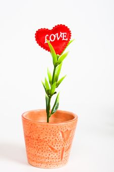 Free Small Pot With A Love Flower Stock Image - 17952121