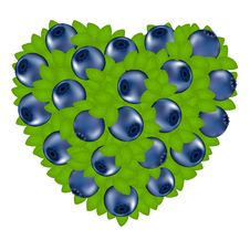 Heart From Bilberry. Vector Stock Images