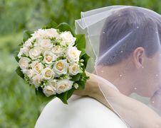Free Wedding Moment Royalty Free Stock Photo - 17953925