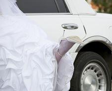 Free Bride S Slipper Stock Image - 17954011