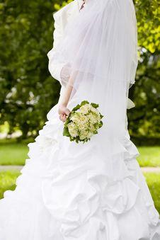 Free Bride Stock Photography - 17954022