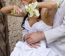 Free Fiance Inarm Happy Bride Royalty Free Stock Photo - 17954115