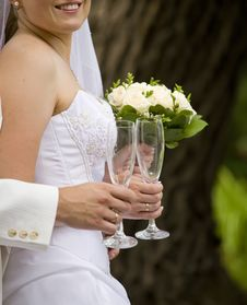 Free Happy Bride Royalty Free Stock Image - 17954236