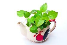 Free White Teapot. Stock Photography - 17955522