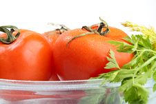 Free Tomatoes Royalty Free Stock Images - 17956689