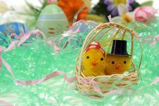 Free Mom And Pop Chicks Stock Image - 17957341