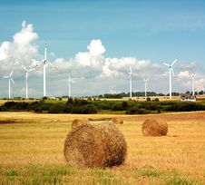 Free Wind Turbine And Golden Field Stock Image - 17960051