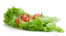 Free Tomatoes And Lettuce On The White Stock Image - 17961971
