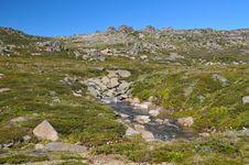 Free Rocky Mountain Stream Royalty Free Stock Photos - 17963978