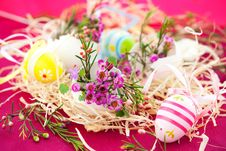 Free Pink Flowers In Eggshells Stock Photography - 17966062
