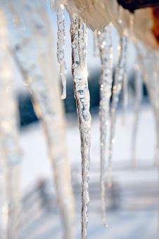 Free Icicles Closeup Royalty Free Stock Photo - 17966295