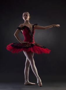 Free Beautiful Ballerina Posing Royalty Free Stock Photos - 17967588