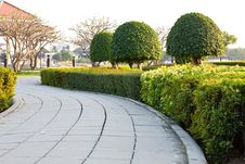 Free Sidewalk In The Park Stock Photo - 17968130