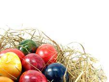 Free Easter Eggs On Grass Royalty Free Stock Photography - 17968137