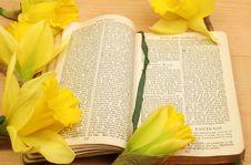Prayer Book And Daffodils Stock Photos