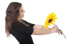 Free Woman Holding A Sunflower Stock Image - 17971921