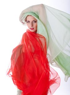 Free Beautiful Woman With Veil Royalty Free Stock Image - 17973016