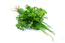 Free Coriander And Green Shallot Stock Photo - 17974600