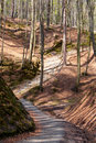Free Wooden Stairs On A Hill Royalty Free Stock Images - 17981699