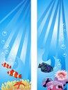Free Underwater Scene Royalty Free Stock Image - 17985586