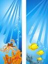 Free Underwater Scene Stock Images - 17985604