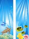 Free Underwater Scene Stock Image - 17985611