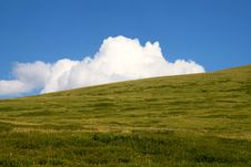 Free White Cloud Behind Green Hill Royalty Free Stock Photo - 17981725