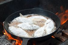 Fish In A Skillet Stock Image