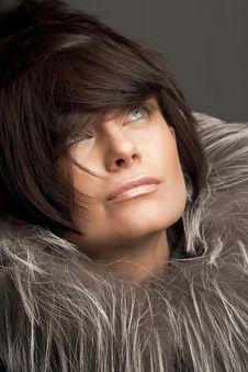 Free Woman In Fur Coat Stock Photo - 17985060