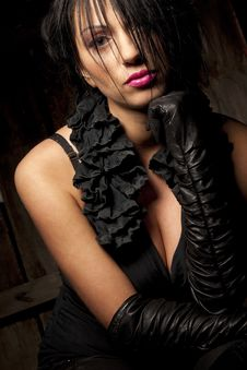Woman With Silky Black Hair Stock Image