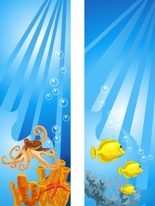 Free Underwater Scene Stock Images - 17985604