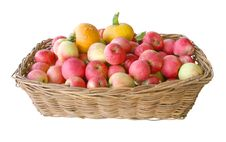 Free The Basket With Apples And A Pumpkin Stock Images - 17988474