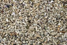 Free Sea Stones Royalty Free Stock Image - 17988516