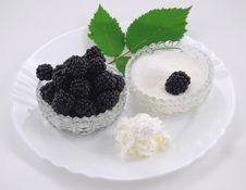 Free Still Life With Black Berry Stock Photos - 17988793