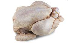 Free Fresh Raw Chicken Stock Image - 17991171